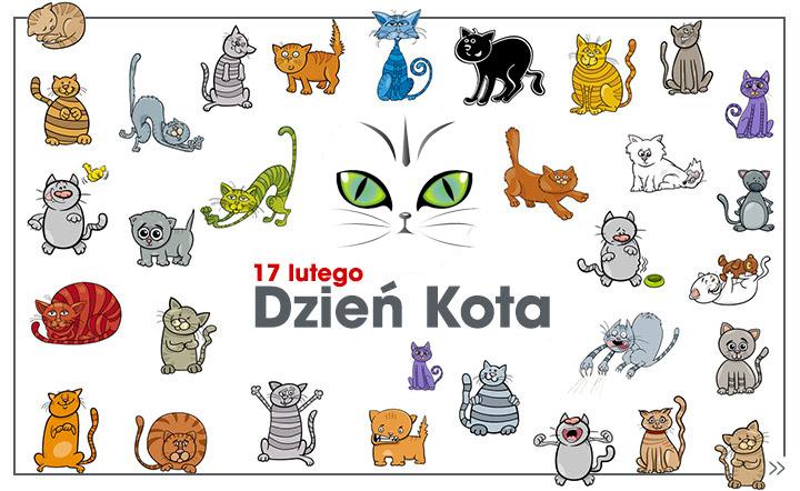 Znalezione obrazy dla zapytania: dzień kota napis przedszkole